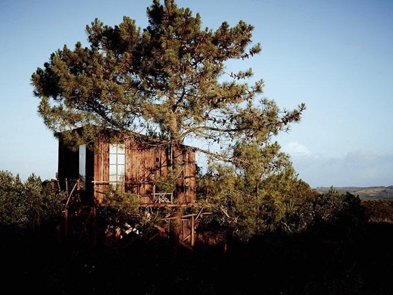Glamping in Portugal atInto the Wild Algarve, Faro